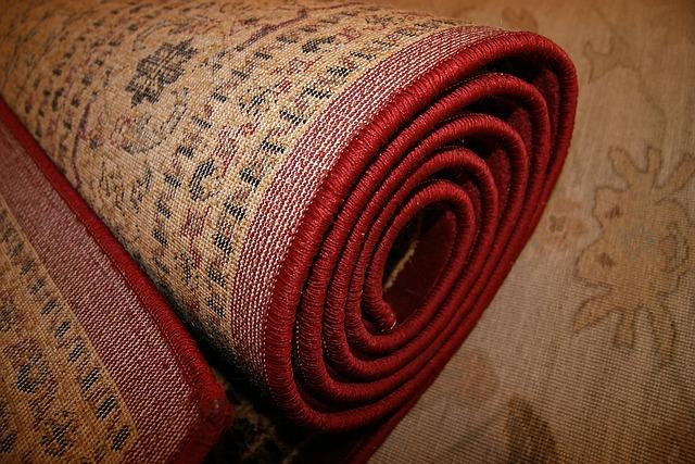 ניקוי שטיח משתן של כלב